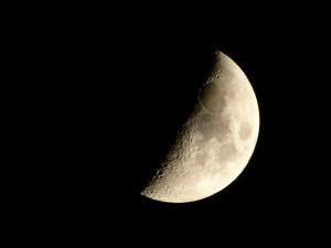 上弦の月写真